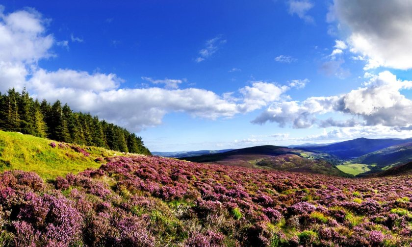 1-wicklow-mountains-national-park