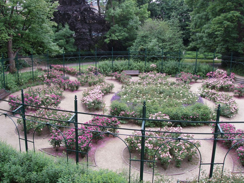 57. Iveagh Gardens - The Rose Garden.jpg