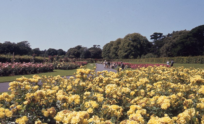 65. St. Anne's Park and Rose Gardens.jpg