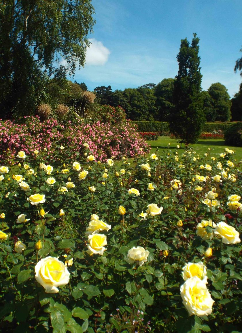 66. St. Anne's Park and Rose Gardens.jpg
