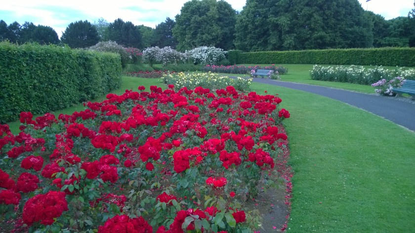 67. St. Anne's Park and Rose Gardens.jpg